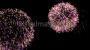 Fireworks Traditional Basic Loop